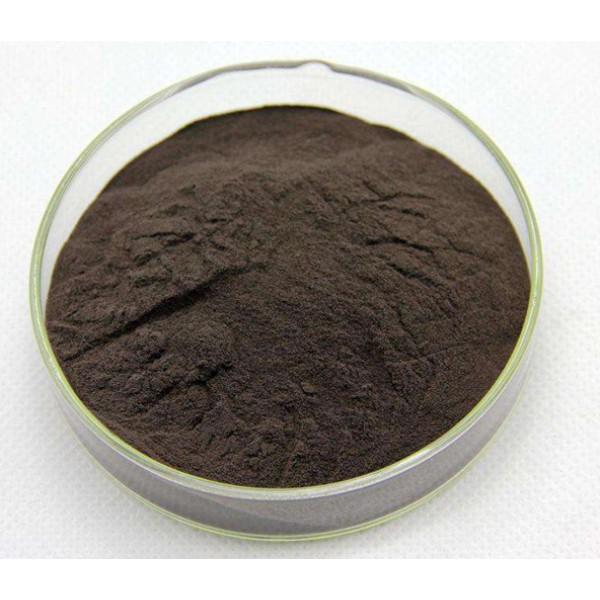 Everyday Health Black Ant Extract Qi Tonic 60 Capsules