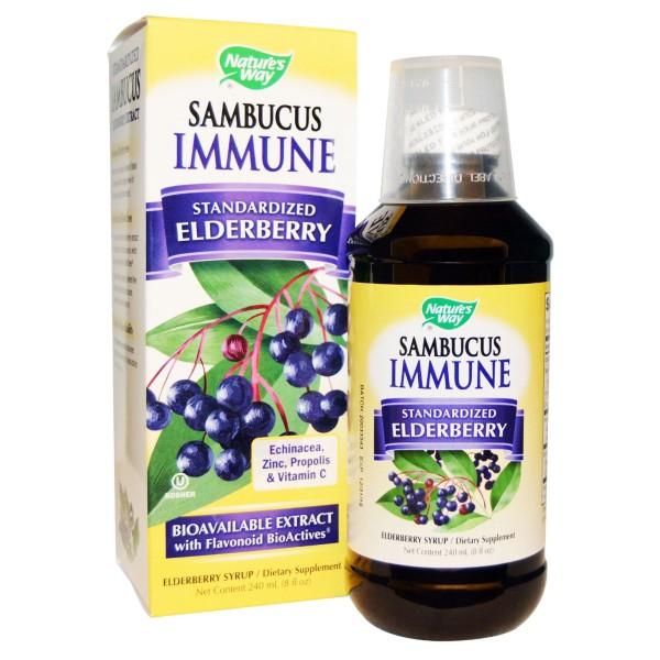 Nature's Way Sambucus Immune Elderberry Syrup 120ml